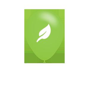 Ballonnen en het milieu